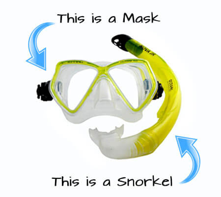 Snorkel and Mask for snorkeling - Learn How To Snorkel