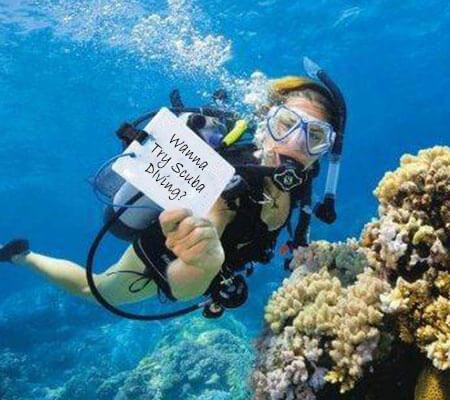 Scuba Try Dive - Snorkel Pattaya