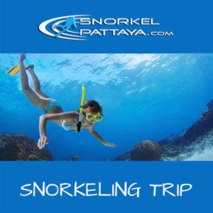 PATTAYA SNORKELING TRIP