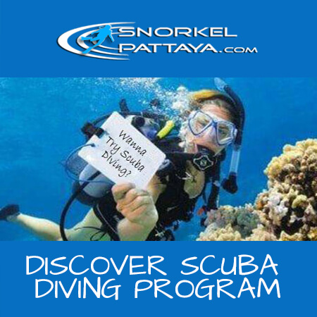 Discover Scuba Diving Pattaya