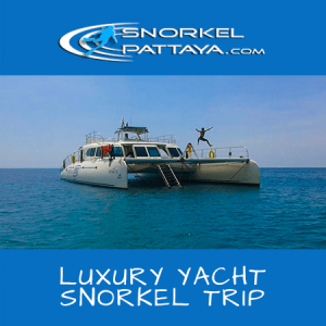 Serenity Luxury Catamaran Snorkel Day Trip Deposit