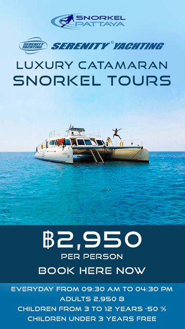 Serenity Luxury Catamaran Snorkel Day Trip